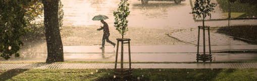 rain-3581659_960_720