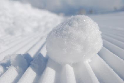 snowball-957759_960_720.jpg